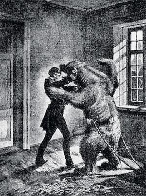 Маша, медведь и благородный разбойник Наука и жизнь