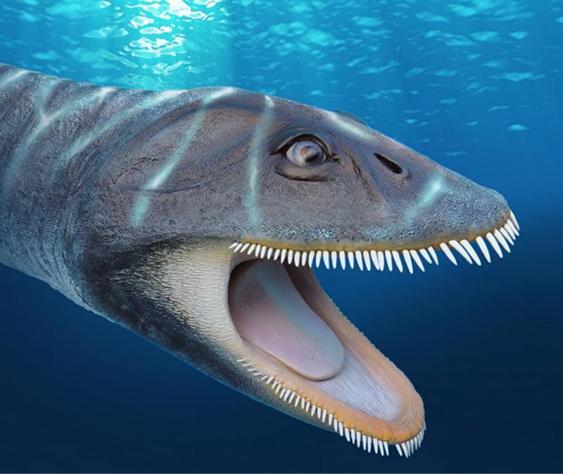 Покажите нам картинки динозавров