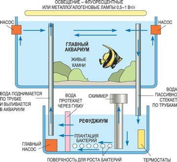 Приспособление для аквариума своими руками